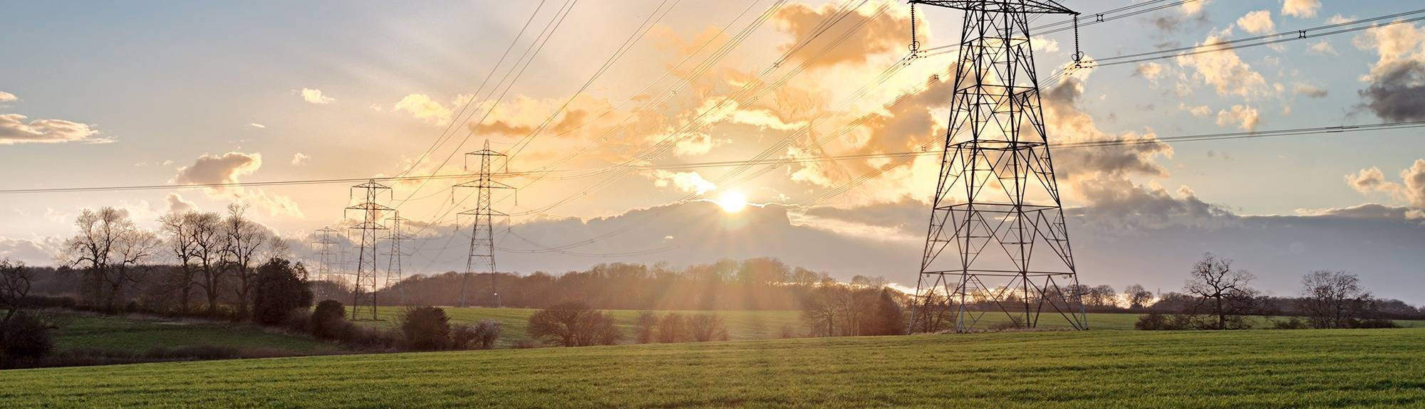 Open fields with electricity pylons